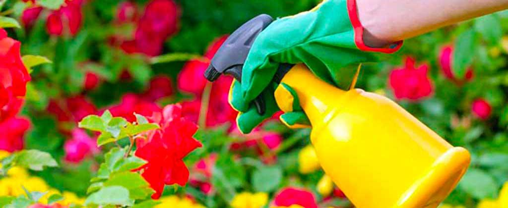 trattamenti fitosanitari parma