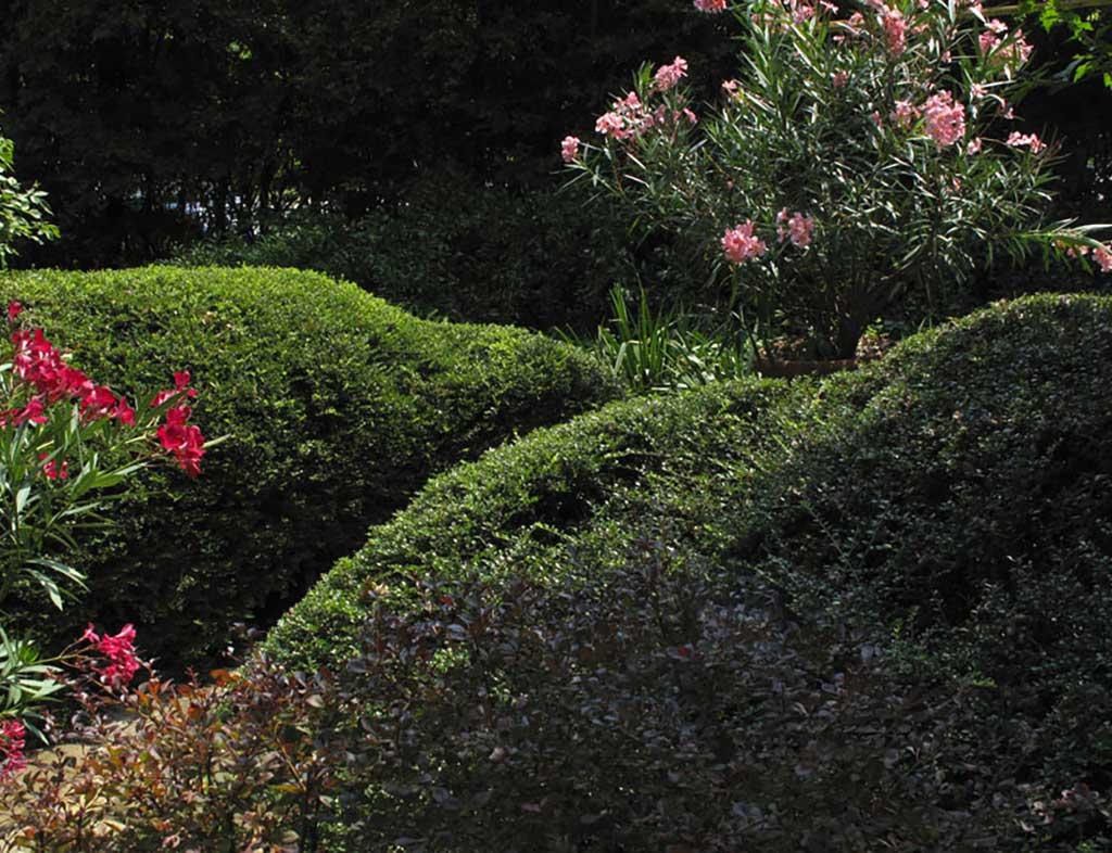 Realizzazione giardini a Parma